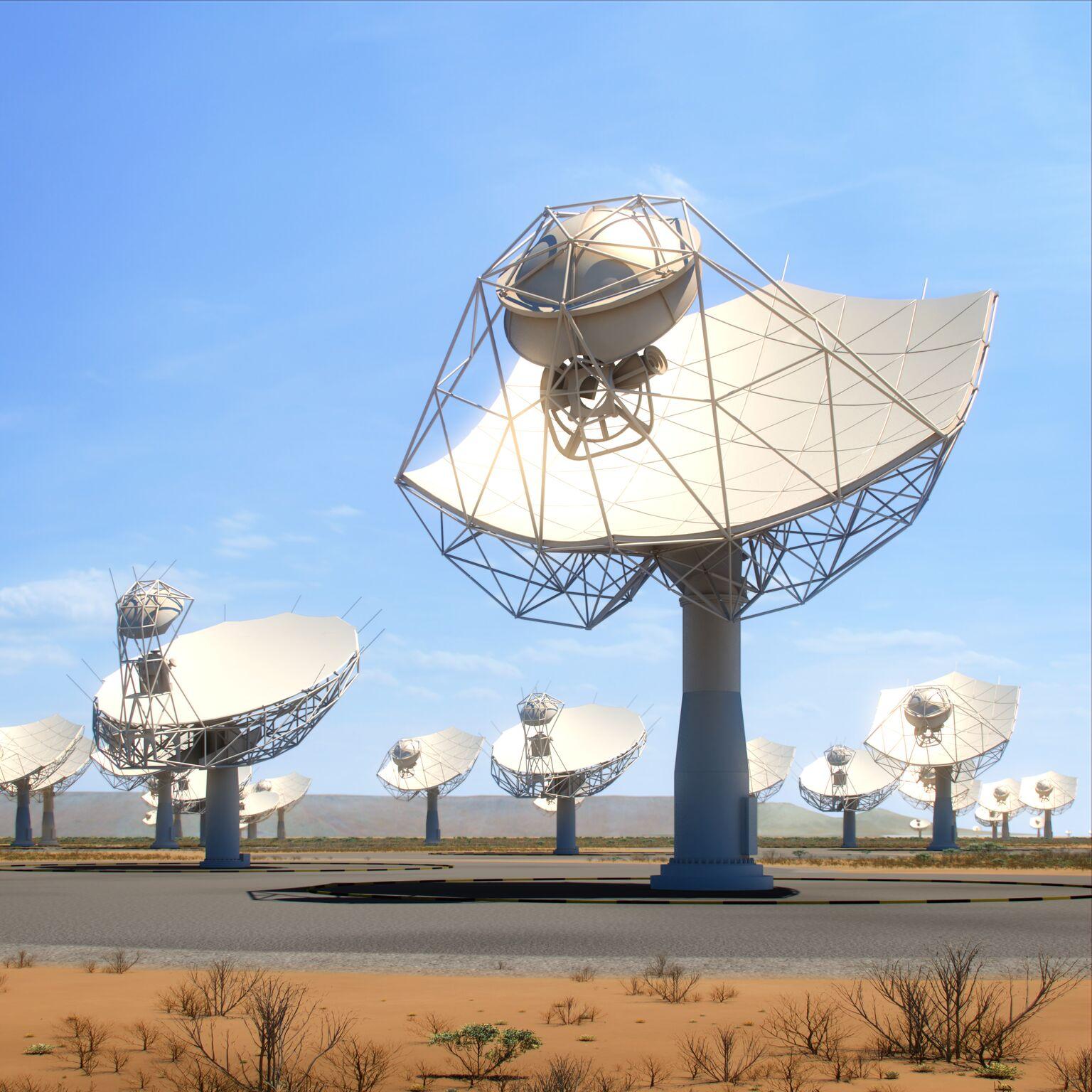 Vue d'artiste des antennes de SKA-MID